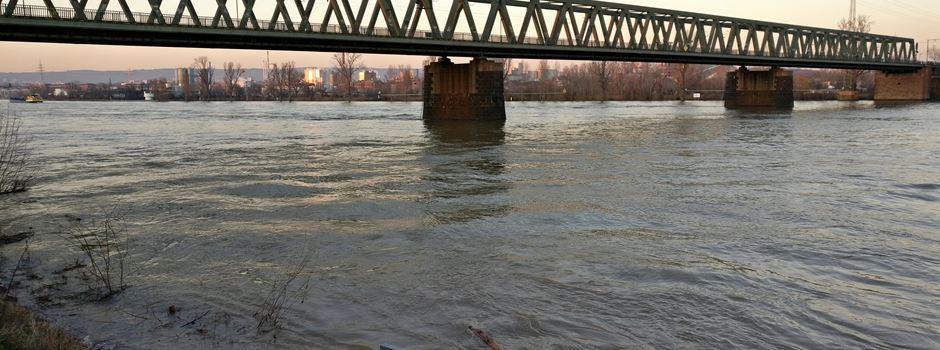 Hochwasser in Mainz: Rhein-Pegel steigt an