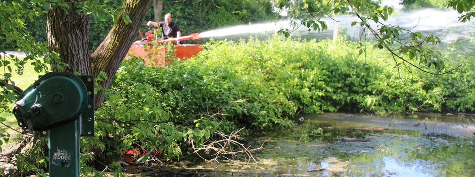 Moselbach-Teich: Horrende Summe steht für Erneuerung im Raum