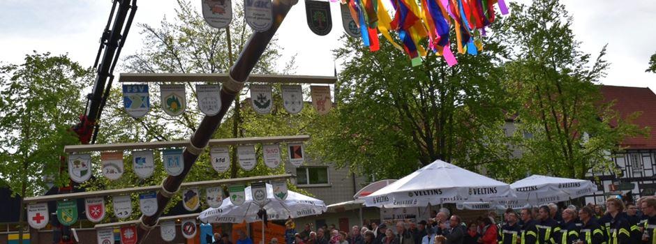 12. Maibaum in Clarholz steht