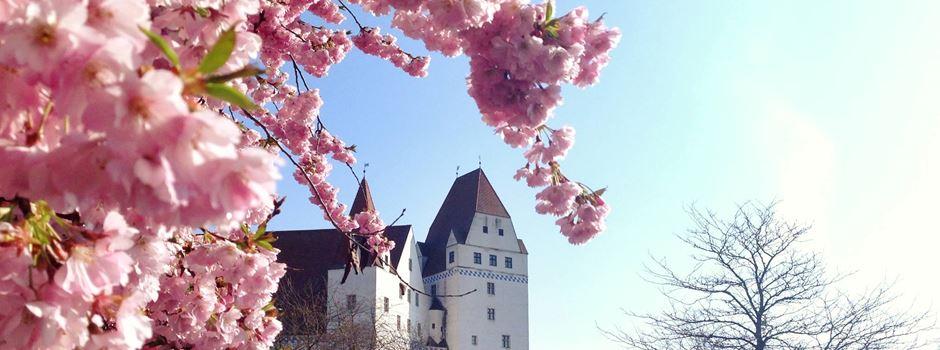Ausflug nach Ingolstadt – 5 Hallo-Tipps für einen perfekten Trip