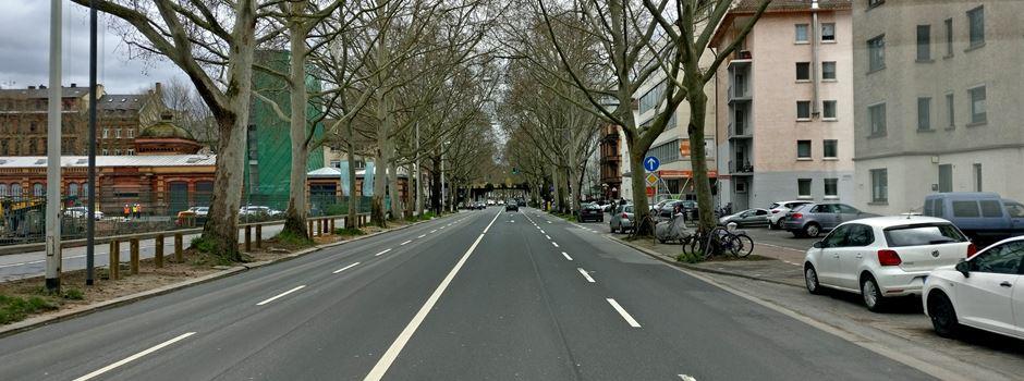 Straßeneinbruch: Fahrspur in der Rheinallee gesperrt