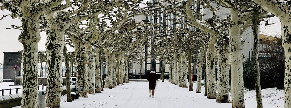 Mainz im Schnee