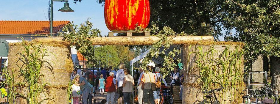 Heimatverein lädt ein zum Apfelmarkt