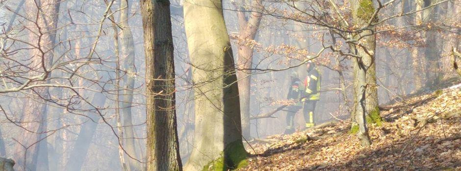 Hohe Waldbrandgefahr in Wiesbaden