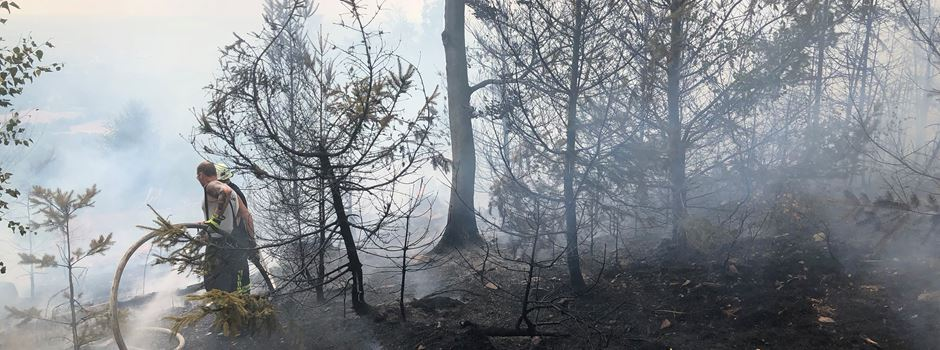 UPDATE: Waldbrand zwischen Eiserner Hand und Platte gelöscht