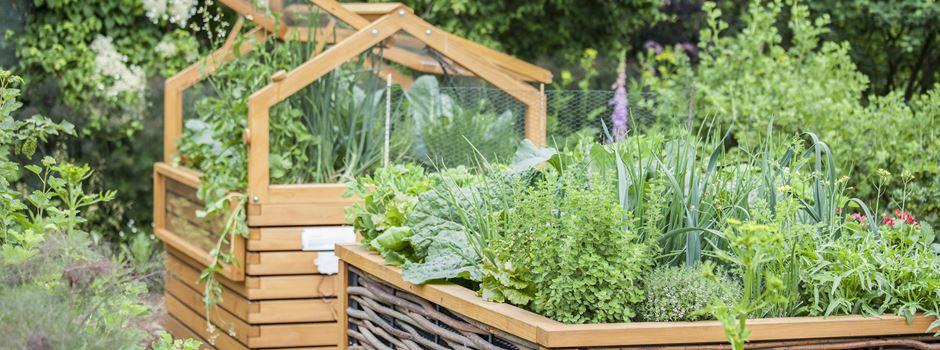 Urban Gardening - Gärtnern kann jeder!