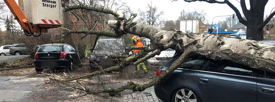 Sturmböen richten teils erhebliche Schäden in Wiesbaden an