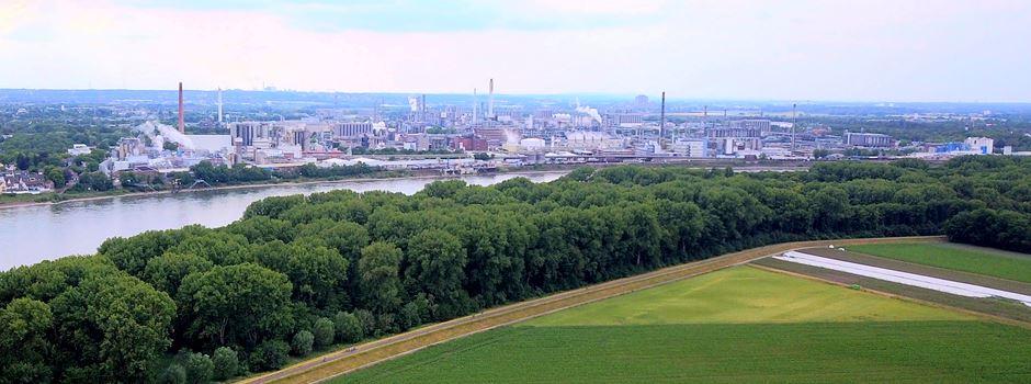 Rheinspange 553: Irrtümer und Falschbehauptungen