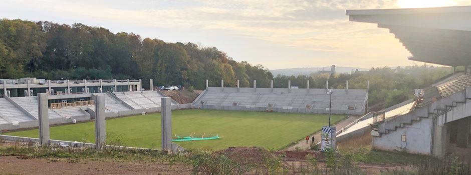 Ludwigspark in Herbert Binkert-Arena umbenennen