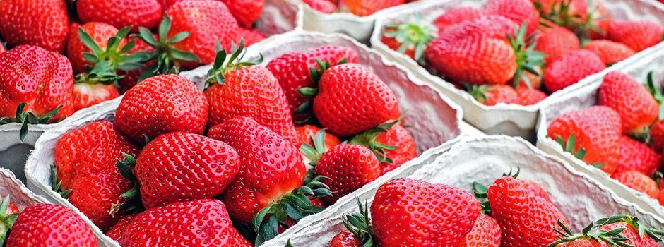 Das müsst ihr über den Start der Erdbeersaison wissen