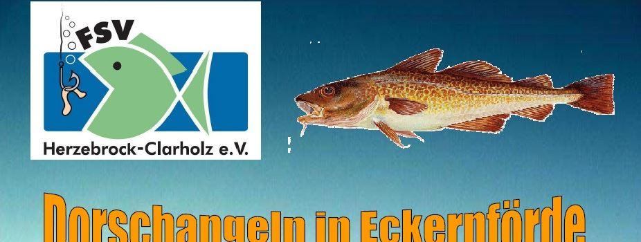 Angelverein: Dorschfahrt nach Eckernförde