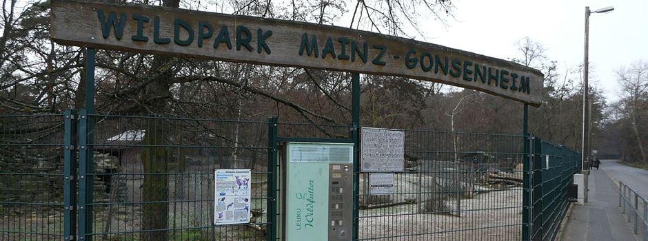 Verwirrung um Maskenpflicht am Mainzer Wildpark