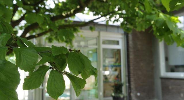 Stellenanzeige: Tageseinrichtung St. Michael sucht eine pädagogische Fachkraft