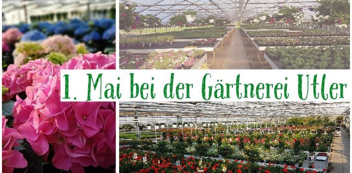 1. Mai bei der Gärtnerei Utler