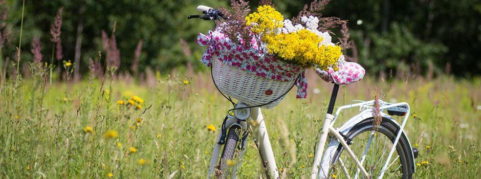 Radtouren für Einheimische und Gäste