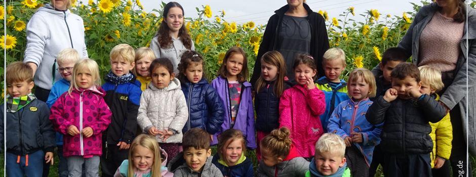 Ausflug zum Sonnenblumenfeld