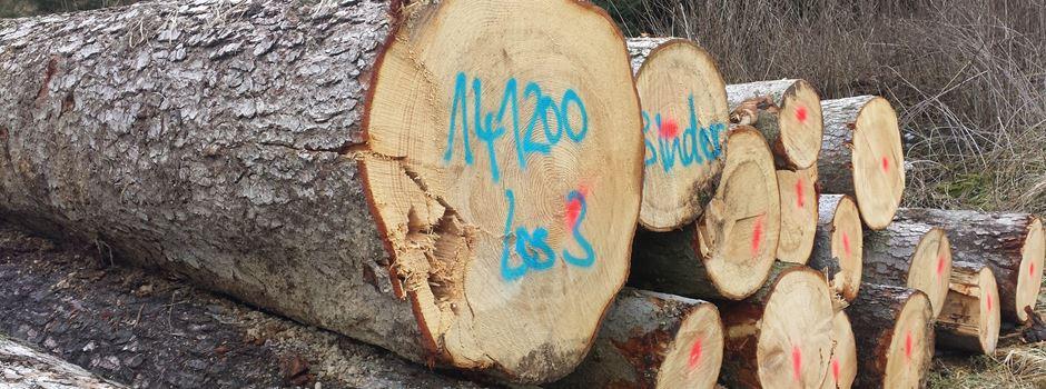 Initiative für Waldschutz