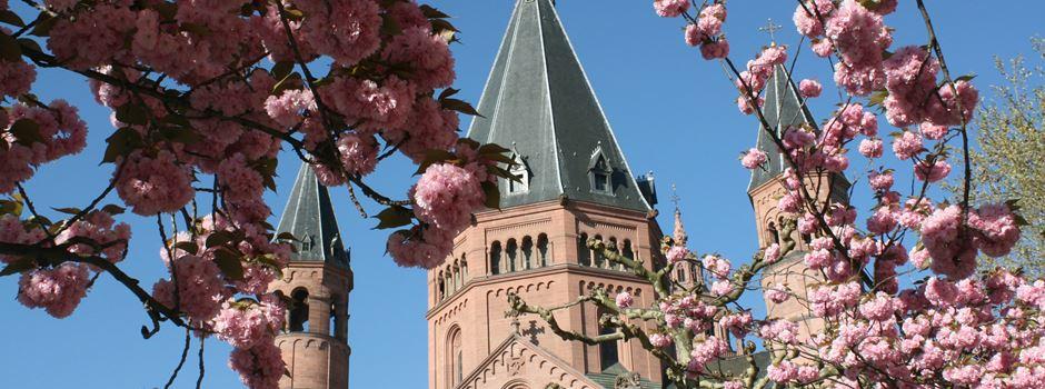 7 Ideen für einen Junggesellinnenabschied in Mainz