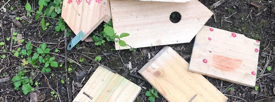 """""""Riesensauerei"""" – getötete Jungvögel sorgen für Entsetzen"""