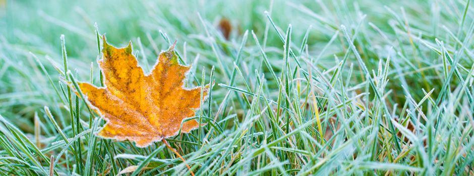 Bodenfrost und Kälte: Der Winter kommt